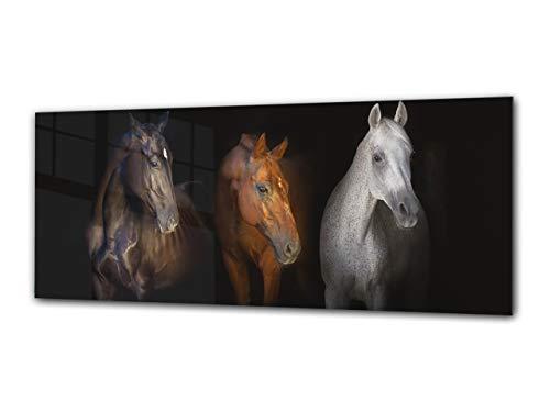 Cuadro decristal decorativo125 x 50 cm – Caballos 1