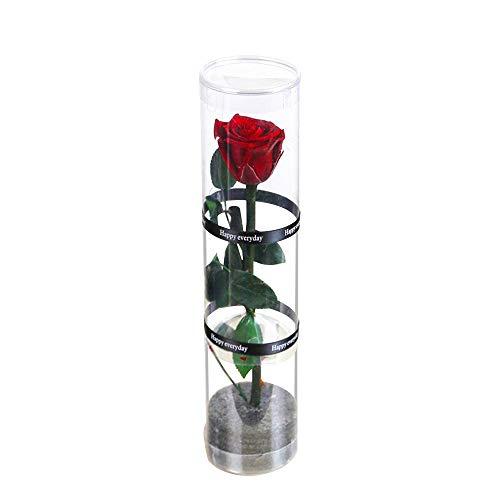 Dewanxin Rosa Eterna,Rosa Natural Preservada,para Decoración del Hogar Boda San Valentín Día de la Madre Navidad Aniversario Cumpleaños - Roja (Deep Red)