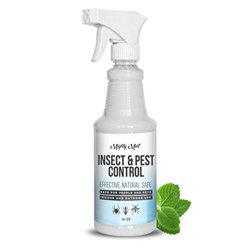 Mighty Mint - 16oz Insect and Pest Control Peppermint Oil - Natural Spray for Spiders, Ants, and More - Non Toxic
