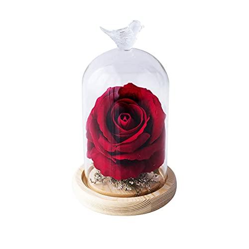 Ownlife Eterno Rose Infinity se levantó en la cúpula de Cristal Flores Artificiales para el día de la Madre del cumpleaños Día de San Valentín Aniversario Navidad