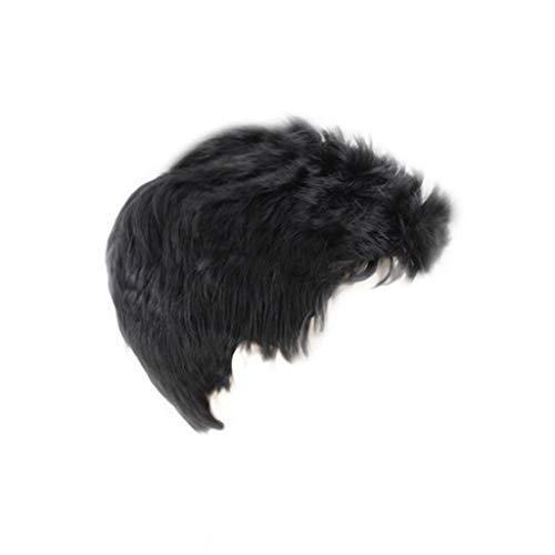 Perruque Cheveux Courts Mode Hommes Rocker Parfaite pour Festival Cosplay Partie Carnavals Noir Réaliste Tête Plate Deux Moelleux Beau Ensemble de Cheveux 8cm Sunenjoy