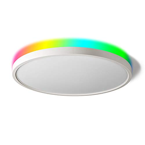 TALOYA Smart Ceiling Light Flush Mount LED WiFi, Compatible with Alexa Google Home, Dimmable Low Profile Ambient Light Fixture for Bedroom Living Room,12 Inch 24W