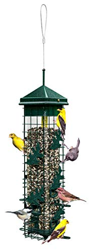 "Squirrel Solution200 5.5""x5.5""x30"" (w/hanger) Wild Bird Feeder with 6 Feeding Ports, 3.4lb Seed Capacity, Free Seed Funnel"