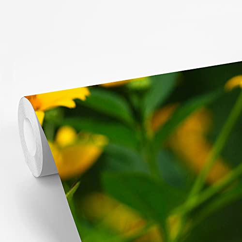 Fotobehang vinyl Aardpeer - Fotobehang Aardpeer - Close-up van een aardpeerplant fotobehang vinyl breedte 260 cm x hoogte 400 cm - Foto print op vinyl behang (in 7 formaten beschikbaar) - slaapkamer/woonkamer/kantoor