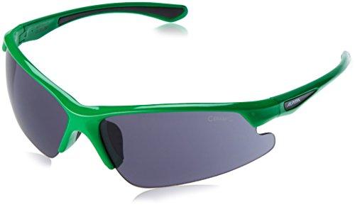 Alpina Sonnenbrille LEVITY, green