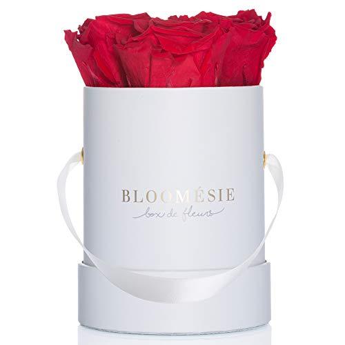 BLOOMÉSIE Duftende Rosenbox mit echten, haltbaren Rosen I 4 Infinity Rosen (rot) in weißer Flowerbox rund l Konservierte Blumen als Geschenk & traumhafte Rosen-Deko l Ewige Rosen in Box