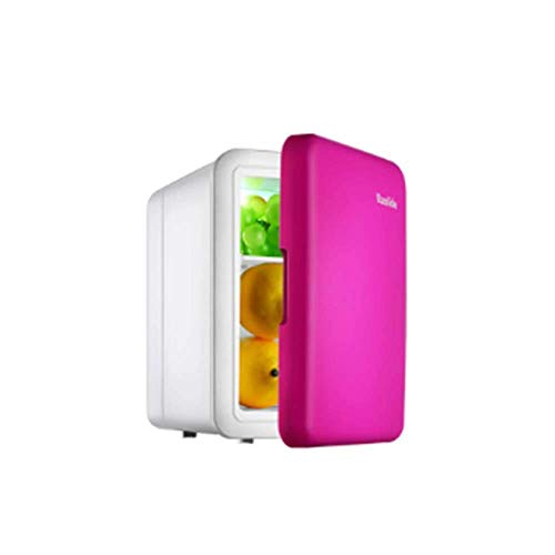 RTYUI Refrigerador De Coche Mini Refrigerador 4L Caja Pequeña De Calefacción Y Refrigeración Coche De Doble Uso