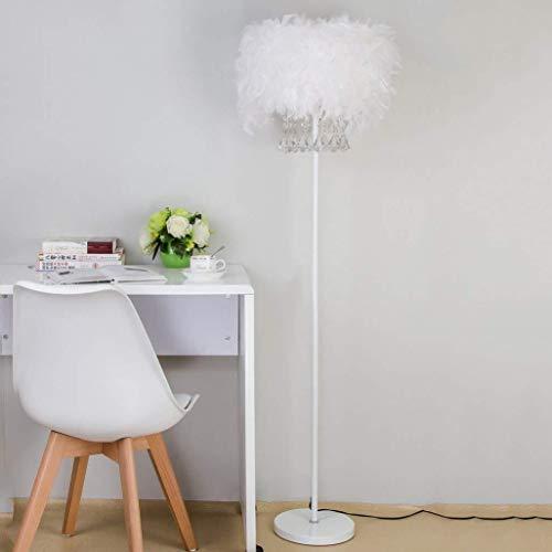 Busirsiz Lámparas de pie, Led cristalina creativa lámpara de pie, lámpara de pie pluma, simple moderno de la cama de la lámpara de la sala dormitorio vertical de la lámpara de luz boda Eye-El cuidado