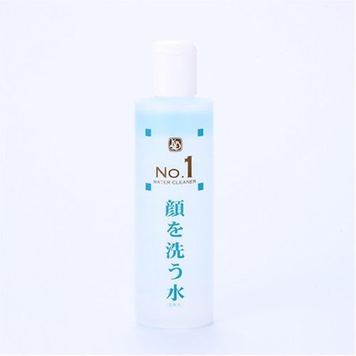 迫害する標準無し顔を洗う水シリーズ ウォータークリーナーNo1:250ml