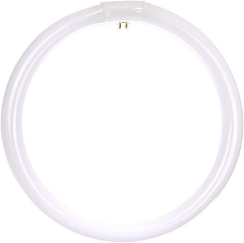 12 inch light bulb - 7