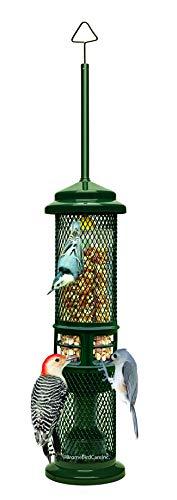 Squirrel Buster Nut Feeder Squirrel-Proof Bird...