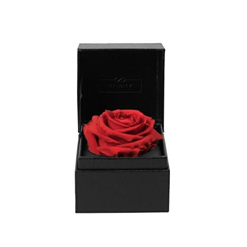 Infinity Flowerbox Single - 1 echte Premiumrose in Vibrant Red