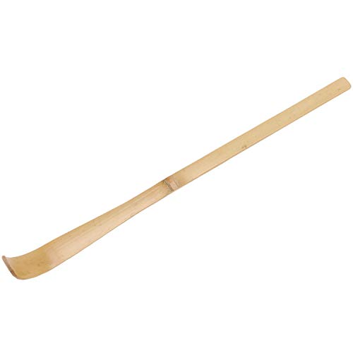 Cuasting 10 piezas retro de bambu natural Matcha cuchara de te herramientas en polvo Matcha cuchara japonesa te ceremonias herramientas Matcha te medidor