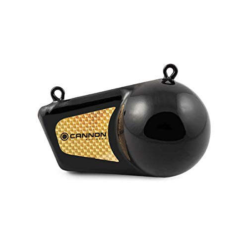 Cannon 1908016 Flash Weight, 16 Pound, Black with Gold Prism
