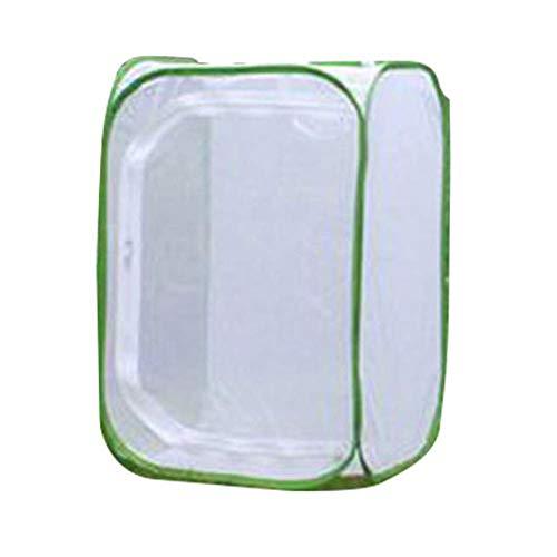 paletur88 Insekt Zucht Käfige Schmetterling Lebensraum Käfig mit Durchsichtig PVC Folie Zusammenklappbar Light-Transmitting Pop-Up Weiß und Netz Pflanze Glashaus Zelt für Raising Außen Aktivitäten