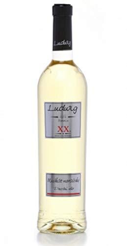 チェコ産白ワイン ムシュカート・モラヴィア 2018 [LUD2001]