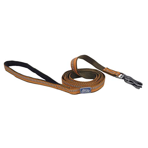 Coastal Pet Products DCP36406COG K9 Explorer 5/8-Inch Leash for Dogs, 6-Feet, Orange