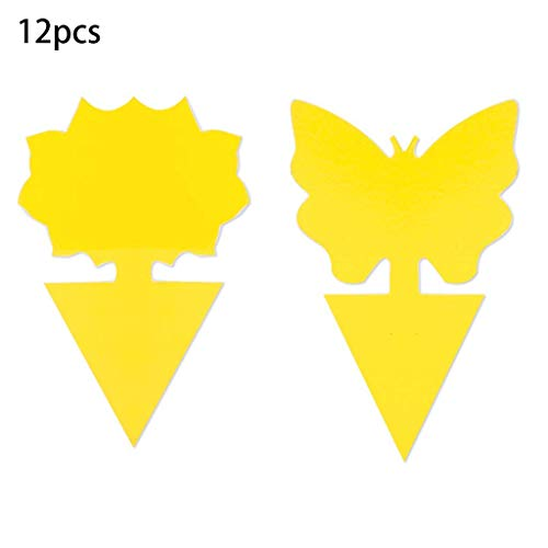 RG-FA Lot de 12 pièges à mouches à fruits jaunes pour intérieur et extérieur