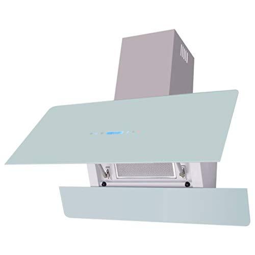 vidaXL Campana extractora con pantalla táctil Blanca 900 mm