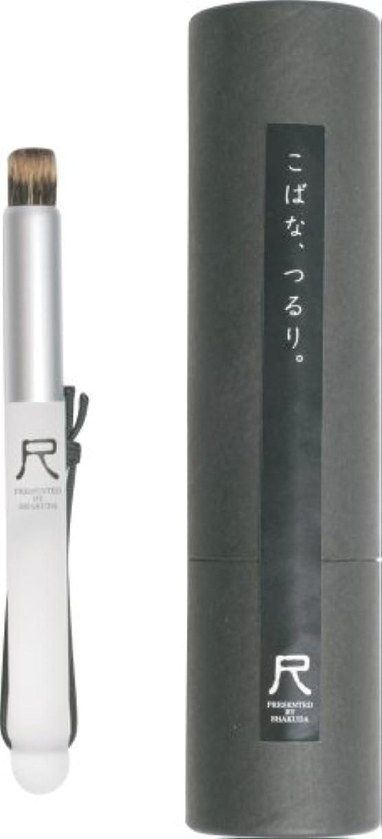 周波数仲人関連する尺 小鼻専用洗顔ブラシ WWW.TORU