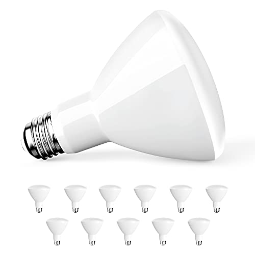 Amico 12 Pack BR30 LED Bulb 9W=65W, 5000K Daylight, 650 LM, E26 Base, Dimmable, Indoor Flood Light for Cans - UL