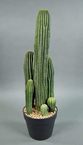 Seidenblumen Roß Säulenkaktus 62cm im Topf DP Kunstpflanzen künstliche Kakteen Pflanzen künstlicher Kaktus
