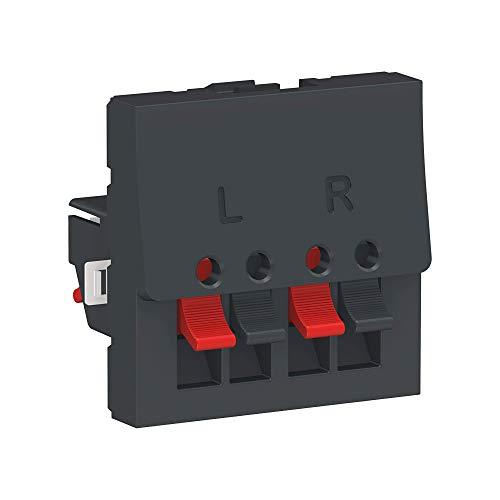 Schneider Electric NU348654 Lautsprecher 2 Module Anthrazit