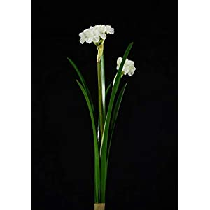 KASMOM 6pcs 40cm Emulation Artificial Narcissus High Grade Indoor Home Decoration Fake Flower Silk FlowerCeremony Ornament