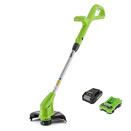 Greenworks Tools Coupe-bordures sans fil G24LTK2...