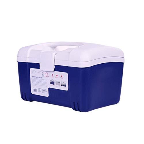 ZXL Elektrische koeler, draagbaar en doorstroomverwarmer, mini-koelbox voor op reis, camping in de auto, ijsblokjesbox met draaggreep, 39 x 3 cm