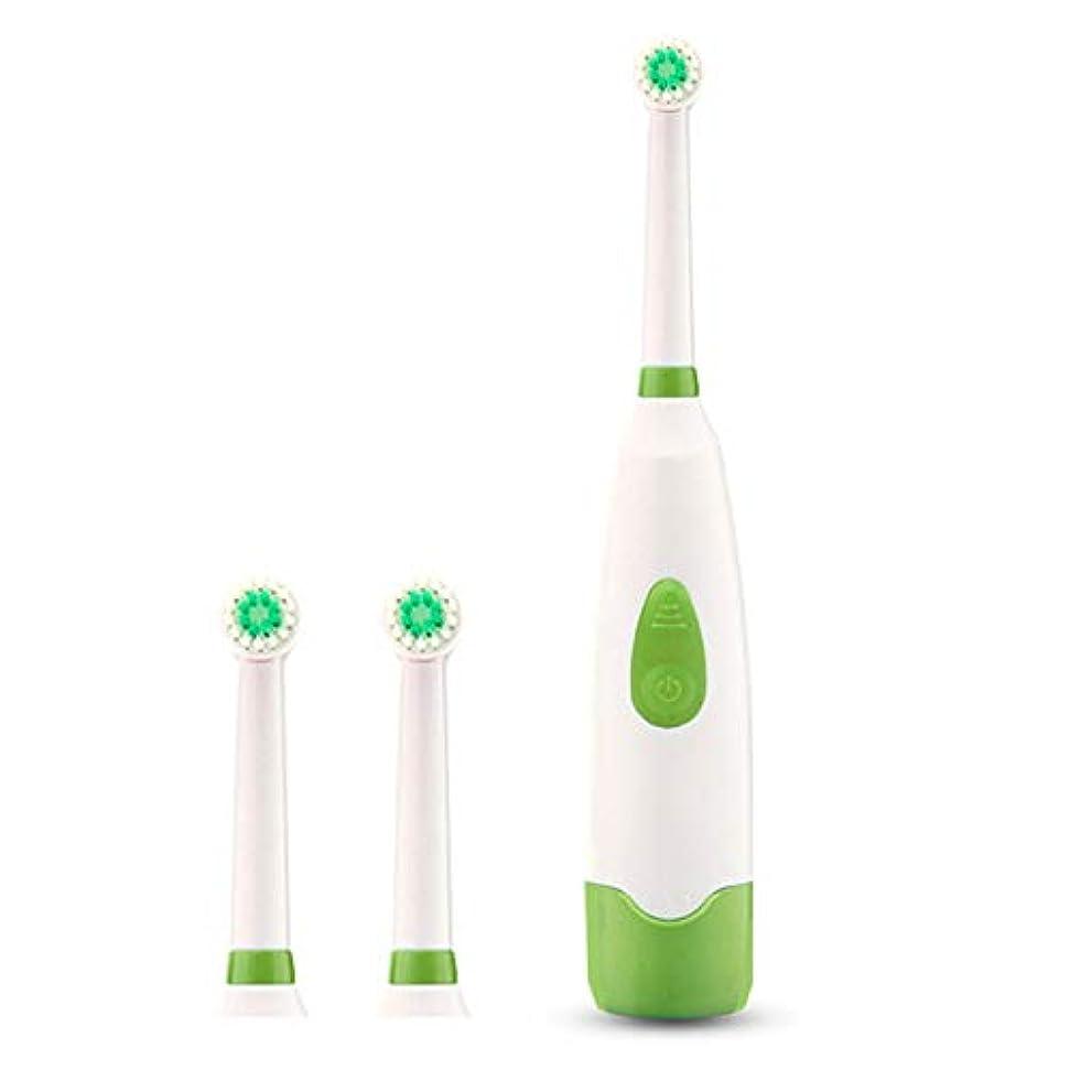 論文土器夕暮れDC 大人の子供用ユニバーサル電動歯ブラシ 防水 回転 2本の歯ブラシヘッドを送る(カラーランダム) 電池式