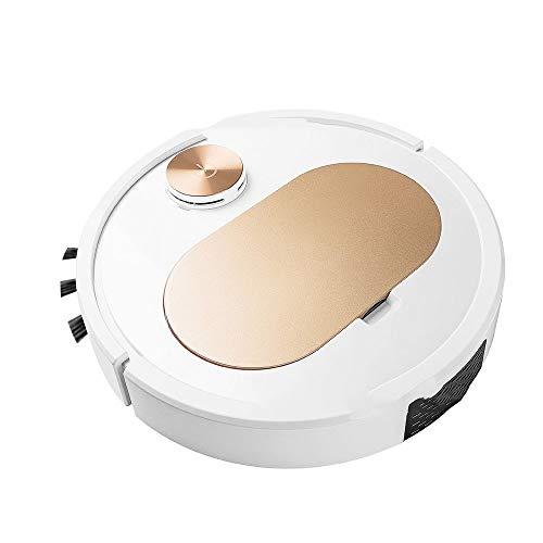 LJXLXY Robot Aspirador y fregasuelos 120min Robot trapeador de Barrido Vacuum Cleaner App/WiFi 3000Pa para Home Aspira, Barre, friega y...