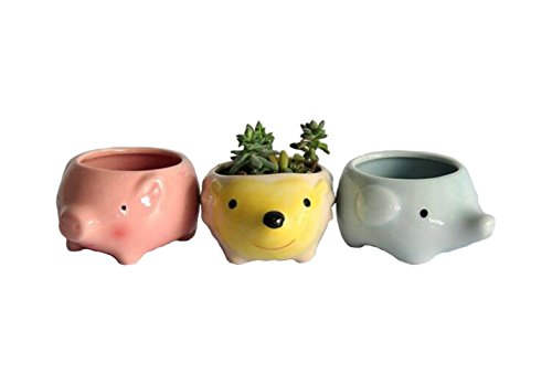 Youfui Cute Animal Succulent Planter Flower Pot Decor for Home Office Desk (Pig+Elephant+Hedgehog)