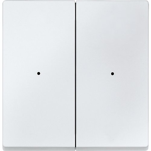 Merten 505219 Funk-Taster CONNECT, 2fach, polarweiß, System M
