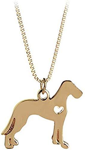 Collar de Labrador Hecho a Mano con Accesorios de Plata o Oro,...