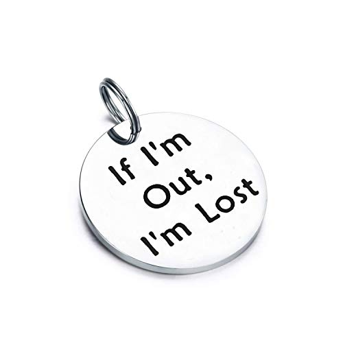 Gzrlyf Pet ID Tag Engraved If I'm Out I'm Lost Personalized Collar Tags Gifts for Dog Cat (Silver)