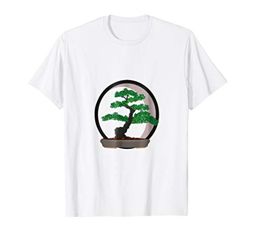 Bonsai Japanese Tree Floating Circle Zen Buddhist Meditation