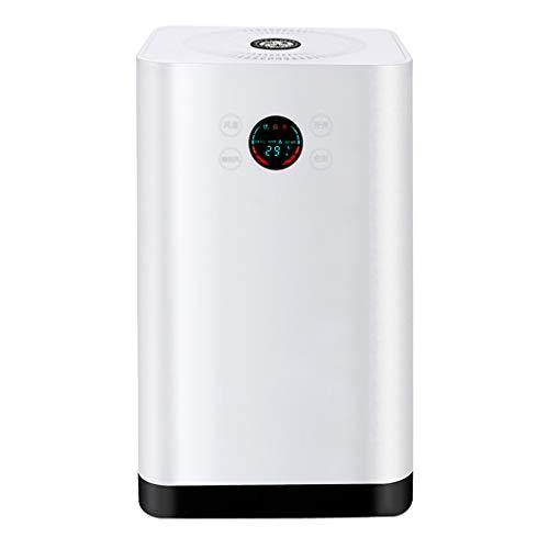 RUIXFAP Ruhig Luftreiniger Air Luftqualitätssensor Automodus Schlafmodus Timer, Für Allergiker Und Raucher Reduziert Rauch Und Gerüche Geschenk, White