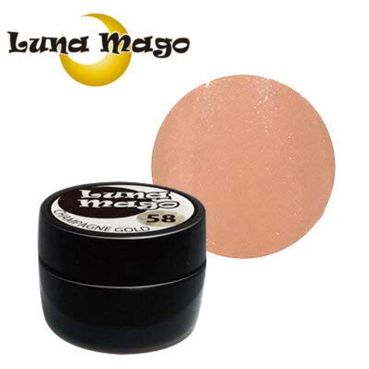 ステッチ気を散らすトラブルLuna Mago カラージェル 5g 025 ヌーディ