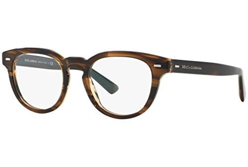 Dolce & Gabbana Brille (DG3225 2925 48)