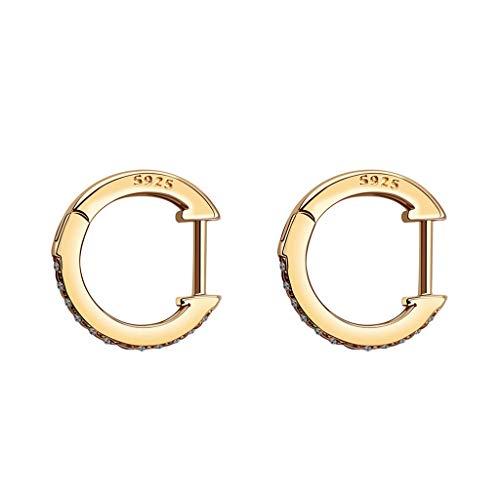 Hahuha , Die neuesten heißen S925 Ocker Ohrringe heißer Explosion Ohrringe Modeschmuck