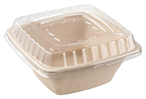 16oz Eco Friendly Bowls with Lids Disposable Compostable Container - Square Bowl Tree Free Sugarcane Bagasse Meal Prep Bento Boxes Take Out Catering Microwavable Deep Container by EcoQuality (250)