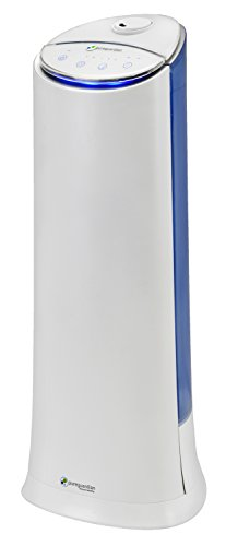 Pure Guardian H3200WAR Ultrasonic Cool Mist Humidifier