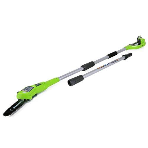 Greenworks Élagueuse sur perche sans fil sur batterie 24V Lithium-ion avec batterie 2Ah et chargeur...
