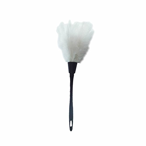 NUOMI Turkey Feather Duster (White)