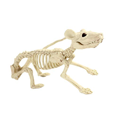 Amosfun Skeleton Props Halloween Animal Spooky Skull Esqueleto Animal Marco Halloween Christmas Birthday Gift para Amigos (Rata)