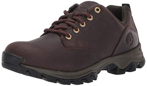 Timberland Men's Mt. Maddsen Oxford, Dark Brown Full Grain, 12 Medium US