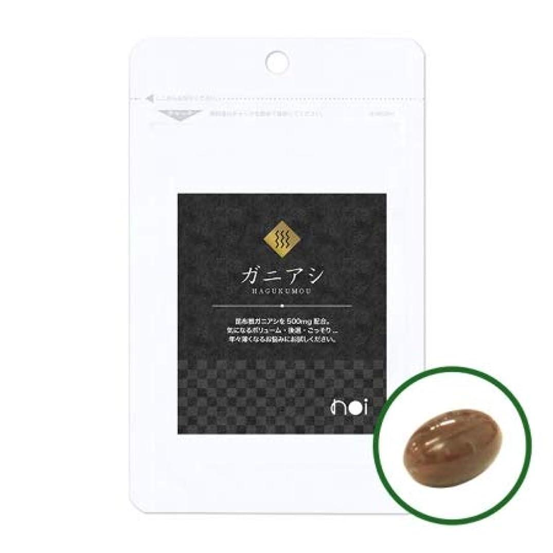過度に外科医大学noi ガニアシ アグリマックス サプリメント 30袋セット 国産 ギガ盛り30%OFF