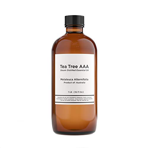 Bulk Tea Tree Essential Oil - 16 Oz Tea Tree Essential Oil in Glass Bottle - 100% Pure & Undiluted Essential Oil - 1 Pound Tea Tree Oil for DIY Soaps, Candles, and Blends - VINEVIDA