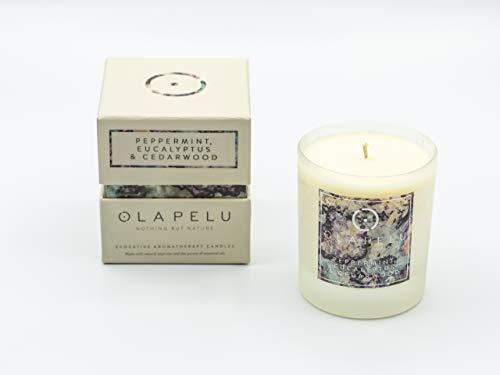 OlaPelu Pepermunt, Eucalyptus en Cederhout Geurende Kaars Soja Wax met Pure Essentiële Oliën - Verse Geur Aromatherapie Soja Kaarsen - 30cl 55 uur Brandtijd